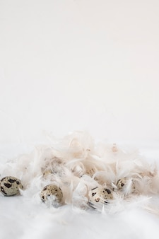 Conjunto de ovos de codorna páscoa entre pilha de penas