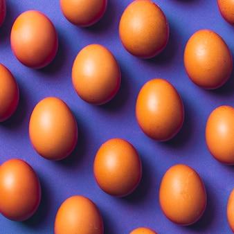 Conjunto de ovos de galinha marrom a bordo