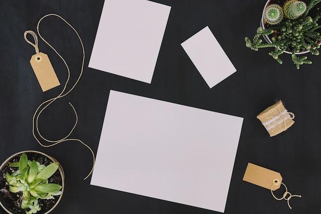 Conjunto de papelaria e plantas