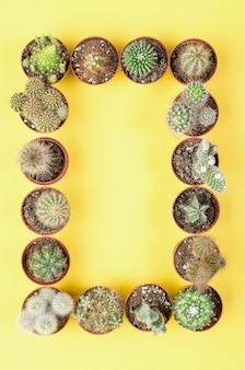 Conjunto de pequenos cactos em um fundo amarelo. vista do topo.