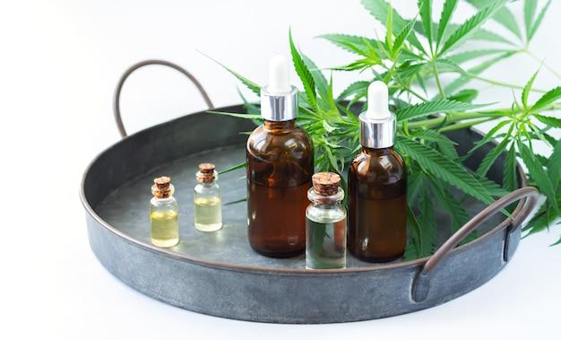 Conjunto de pequenos frascos de vidro e frascos conta-gotas com óleo de cannabis cbd, a tintura ao lado das folhas de cânhamo na bandeja