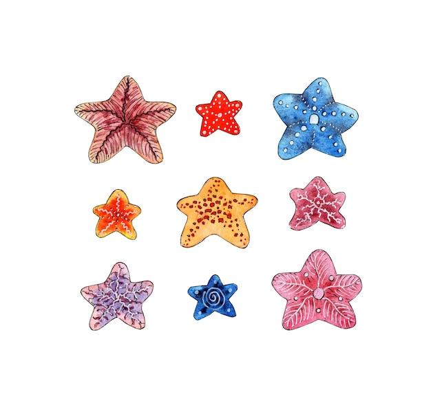Conjunto de pintura em aquarela de pequenos rabiscos de estrelas do mar animais marinhos do oceano habitantes da areia