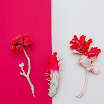 Conjunto de plantas tropicais. pintar. design de arte minimalista