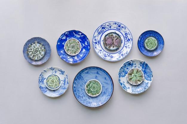Conjunto de pratos de cerâmica com plantas suculentas no fundo da tabela. vista do topo