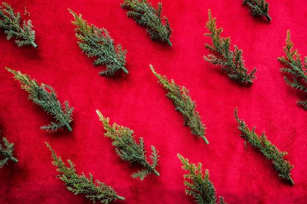 Conjunto de ramos de arborvitae