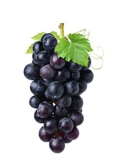 Conjunto de uva preta com folhas isoladas no fundo branco.