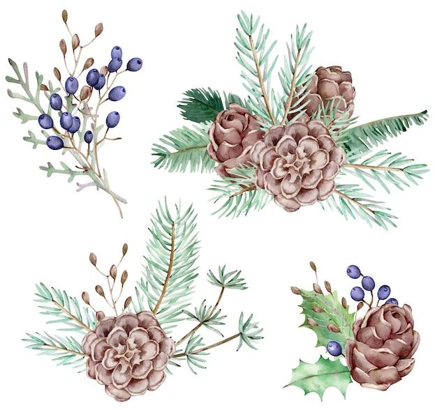 Conjunto em aquarela de galhos de pinheiro e cones com bagas azuis, agulhas em fundo branco, ilustração botânica decorativa para design, plantas de natal.