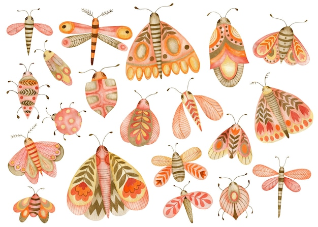 Conjunto em aquarela de ilustrações de borboletas e besouros no estilo boho