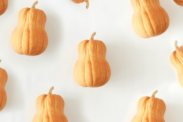 Conjunto liso leigos abóboras branco outono outono vista superior mínima