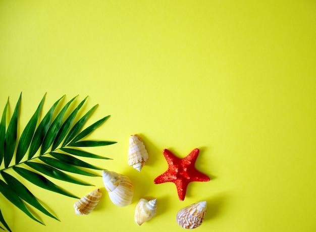 Conjunto plano criativo de conchas do mar, estrela do mar e folha de palmeira com espaço para texto. conceito de viagens de férias de verão. fundo amarelo de verão. quadro bonito.