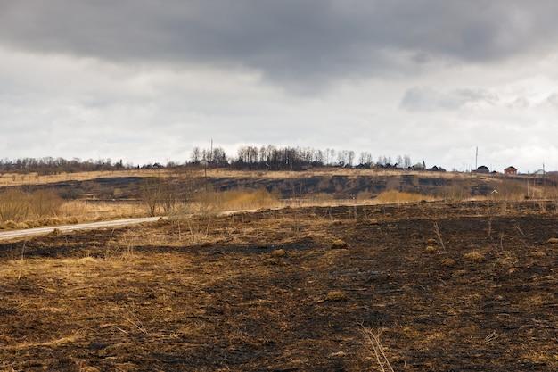 Consequências desastrosas de incêndios florestais