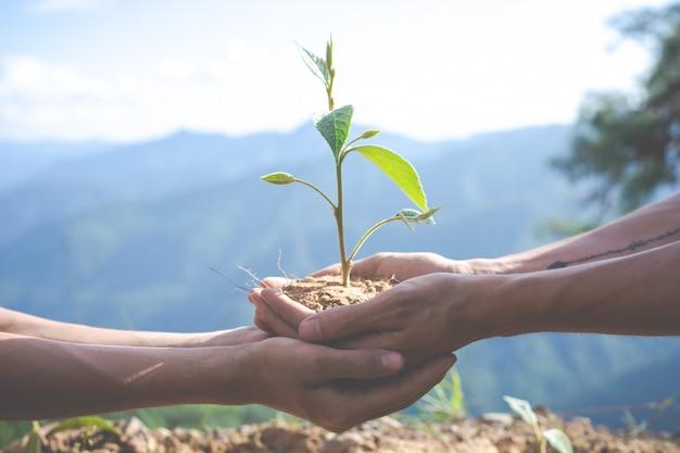 Conservação ambiental no jardim para crianças.