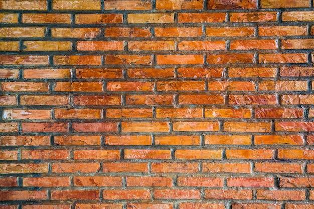 Construção de muro com tijolo e cimento