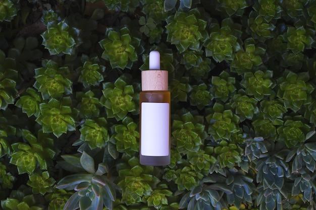Conta-gotas em frasco com fundo de plantas suculentas espaço de cópia de rótulo vazio