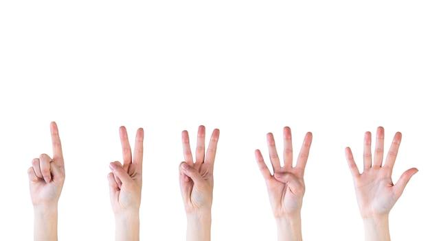 Contando as mãos de um a cinco no fundo branco