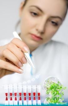 Controle por pcr da contaminação bacteriana em agrião-salat