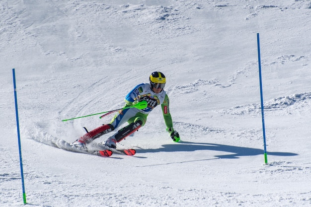 Copa do mundo de esqui alpino fina