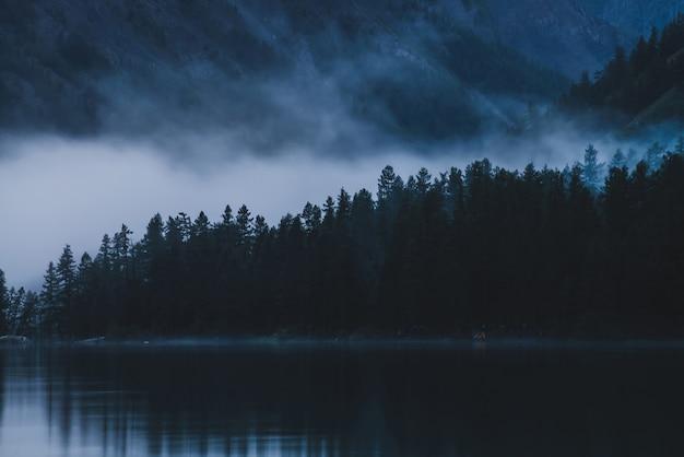 Copas de árvores pontudas na encosta ao longo do lago de montanha no denso nevoeiro