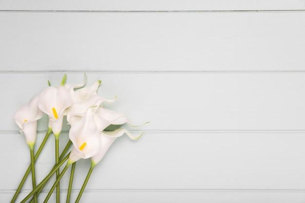 Cópia-espaço buquê de flores desabrochando