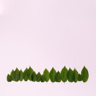 Copie a floresta de espaço de folhas vista superior