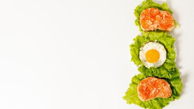 Copie espaço proteína arranjo de café da manhã no fundo liso