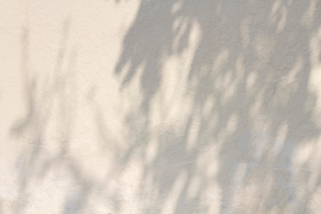 Copie o espaço da parede de concreto branco com sombras