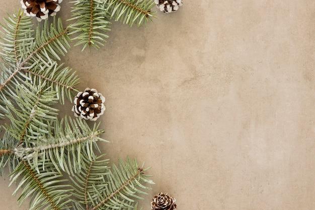 Copie o espaço verde folhas de pinheiro
