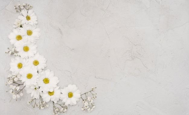 Copie o fundo do espaço com flores da primavera