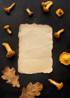 Copie o papel do espaço cercado por cogumelos