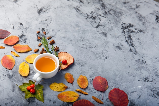 Copo da composição do outono do chá.
