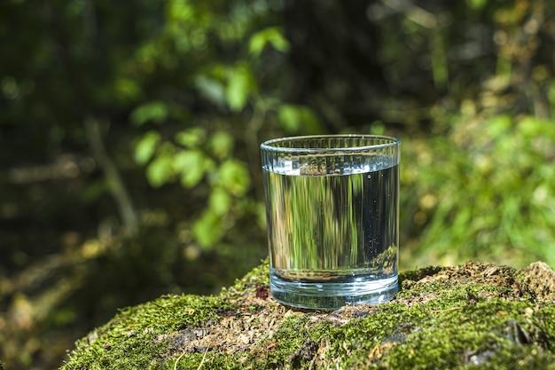 Copo de água limpa no toco de árvore com musgo