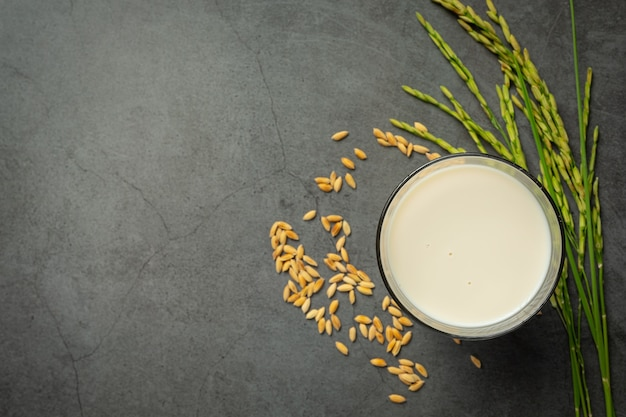 Copo de leite de arroz com planta de arroz e semente de arroz colocado no chão escuro