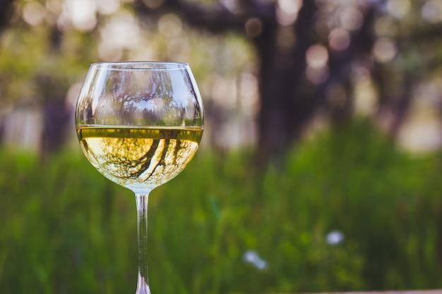 Copo de vinho com vinho no jardim de maçã florescendo