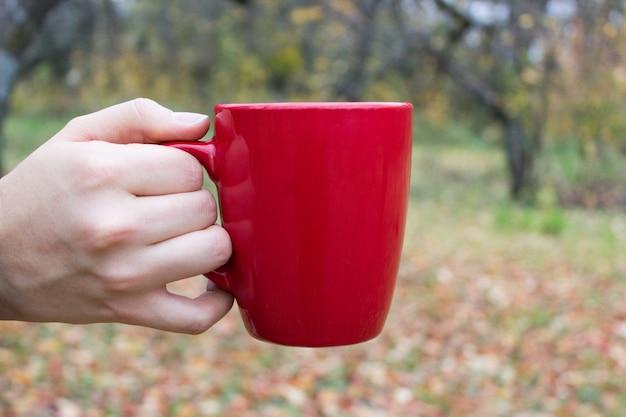 Copo vermelho na mão no outono