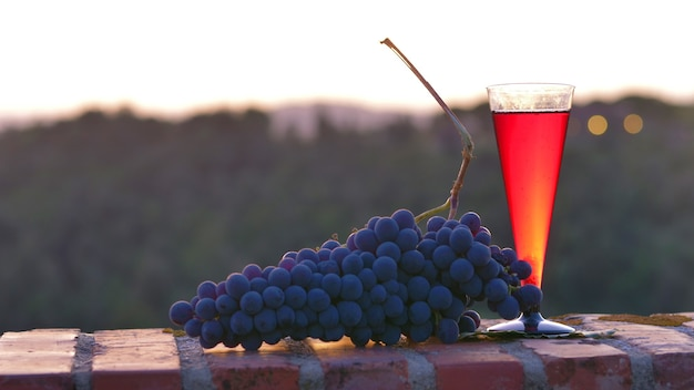 Copos de vinho tinto com uvas pretas no pôr do sol