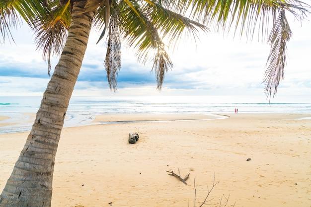 Coqueiro com praia tropical