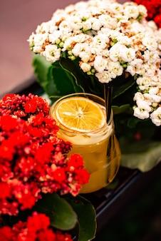 Coquetel de frutas cítricas com suco de laranja e, hortelã e gelo em um copo com gotas. coquetel de álcool multicolorido no bar.