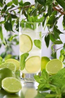 Coquetel mojito orgânico refrescante feito de rum branco de lima fresco combinado com suco e hortelã