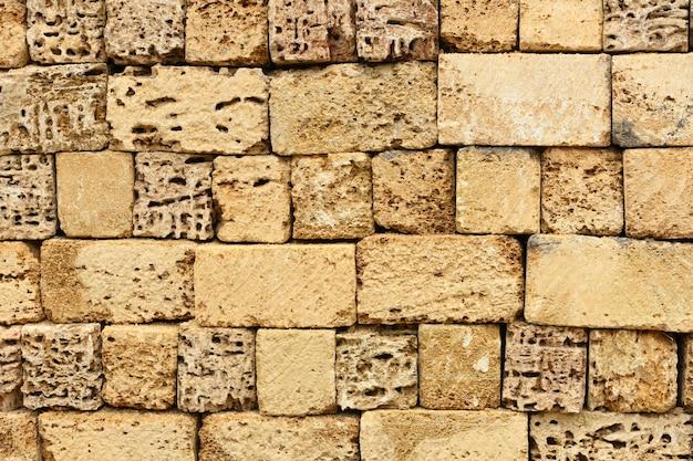 Coquina, shell casa pedra calcária parede plano de fundo texturizado.