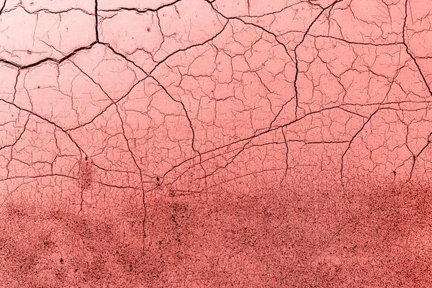 Cor de coral de textura de fundo grunge