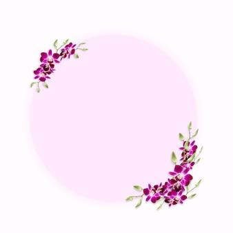 Cor do círculo rosa para o espaço da cópia decorado com moldura de orquídeas tropicais coloridas doces.