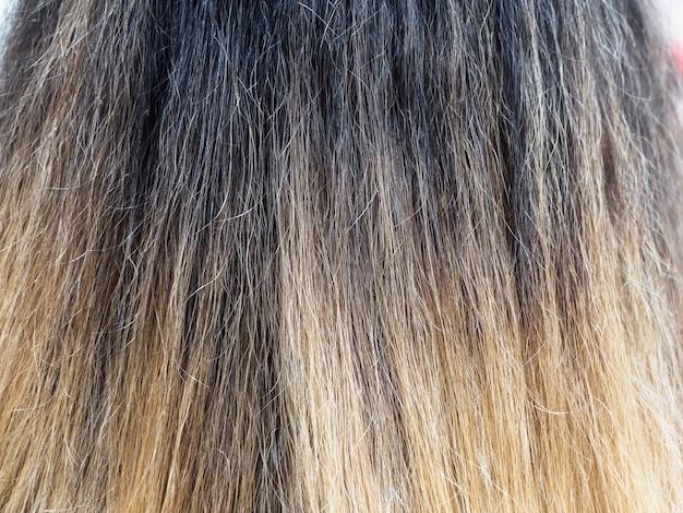 Cor gradiente no cabelo seco de perto