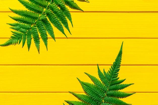 Cor verde da planta tropical tailandesa da samambaia na textura de madeira amarela
