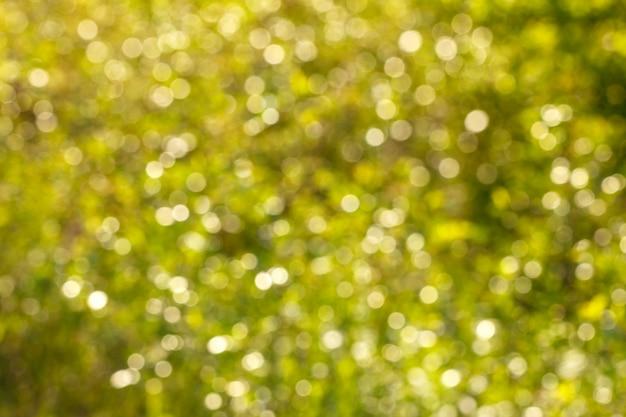 Cor verde natural do fundo abstrato do bokeh.