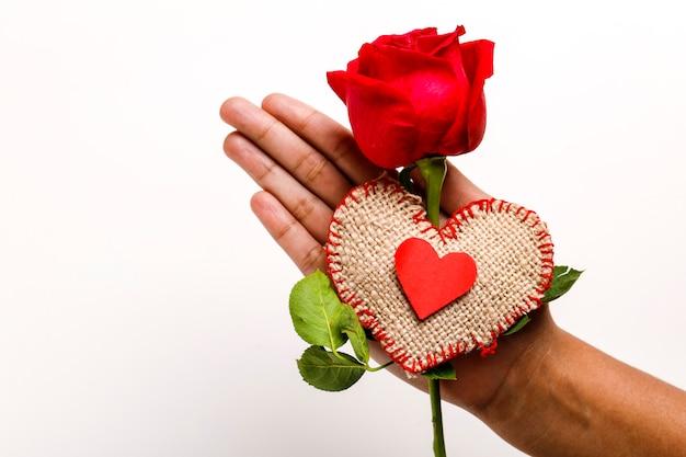 Cor vermelha rosa na mão, conceito de dia dos namorados