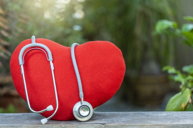 Coração com estetoscópio médico na natureza turva