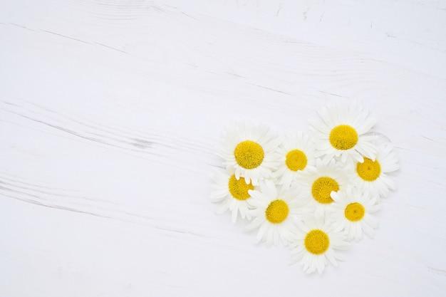 Coração de flores margarida em madeira branca