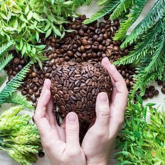 Coração de grãos de café nas mãos e ramos verdes