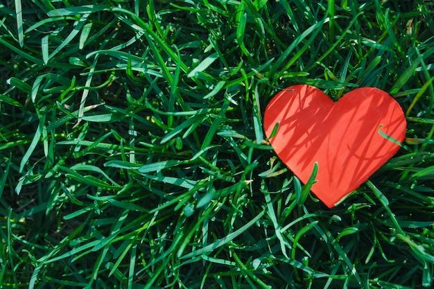 Coração de papel vermelho na grama verde, vista superior, amor fundo de verão