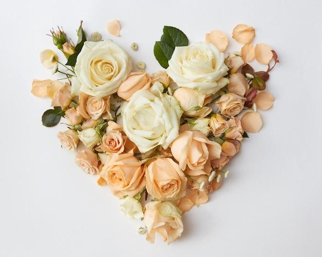 Coração de rosas delicadas em um fundo branco, plano leigo